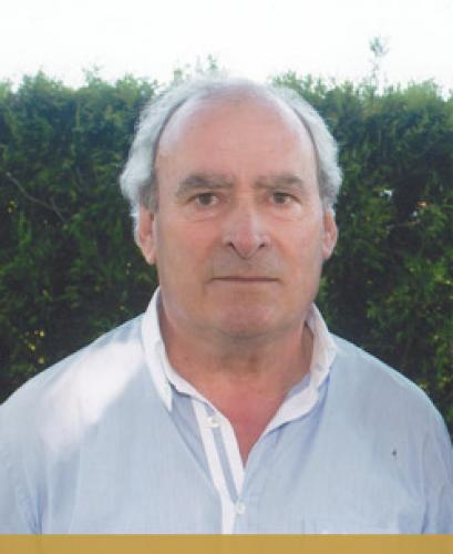 Manuel Gomes da Costa Ribeiro