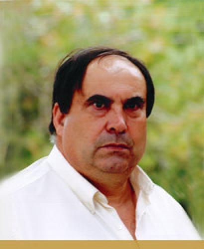 Adelino José Carneiro Moreira
