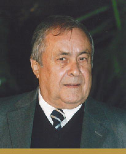 Manuel Carneiro da Silva