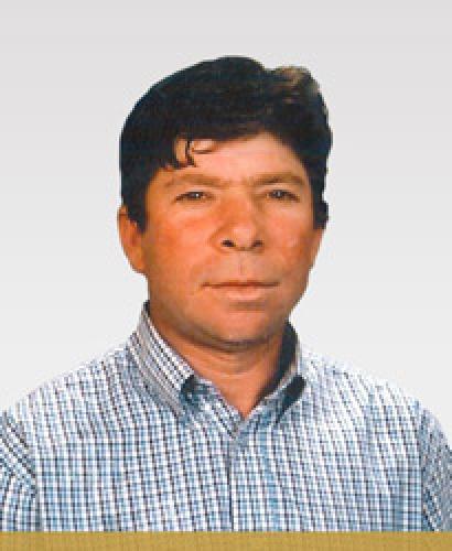 Américo de Sousa Martins