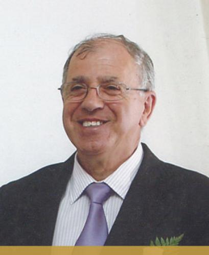 Domingos Silva Machado